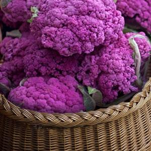 choux-fleur-violet production locale